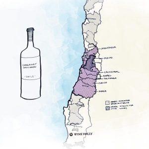Tìm Hiểu về rượu vang Chile