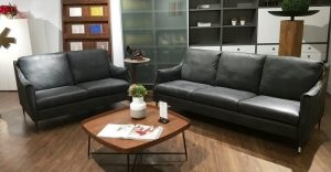 Top 5 Mẫu Sofa Đôi Sang Chảnh Tại Nội Thất Kenli